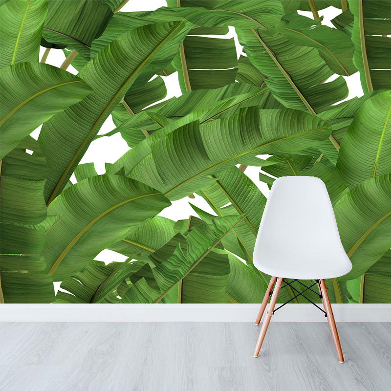 Franco-Moz---Tropical-Jungle