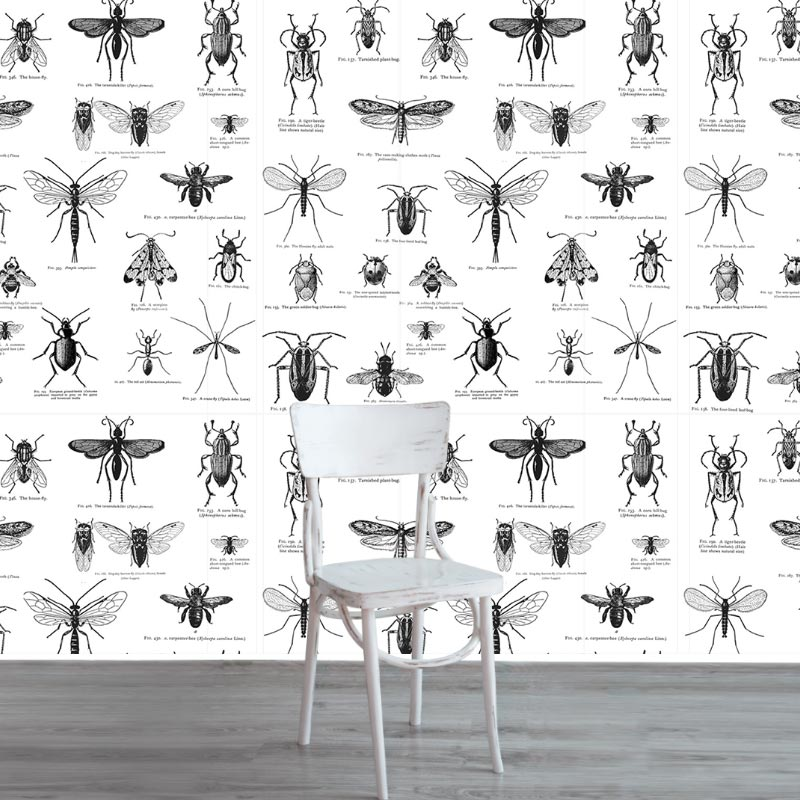 insect_white17