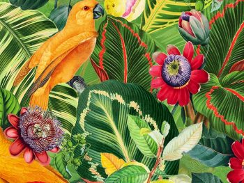 Yellow Parrots in Jungle with Passiflora טפט תוכים